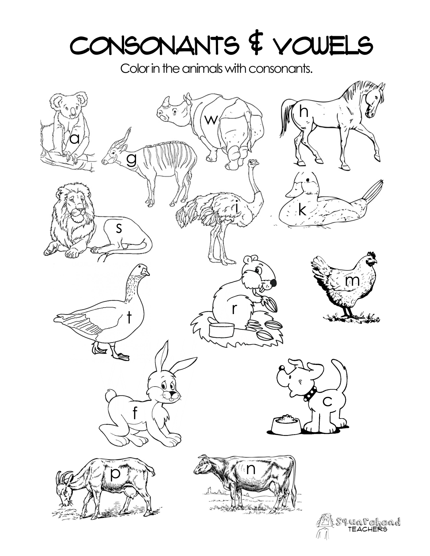 Worksheet Worksheets On Vowels And Consonants consonants vowels free worksheet squarehead teachers