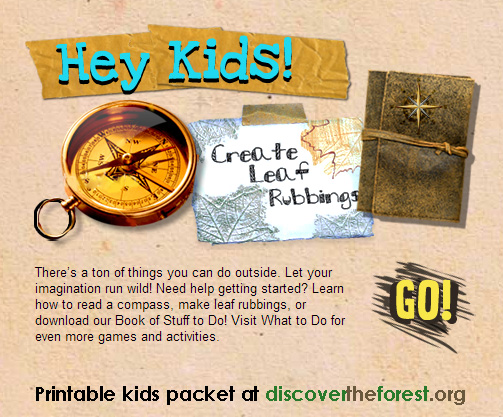 discover the forest kids packet