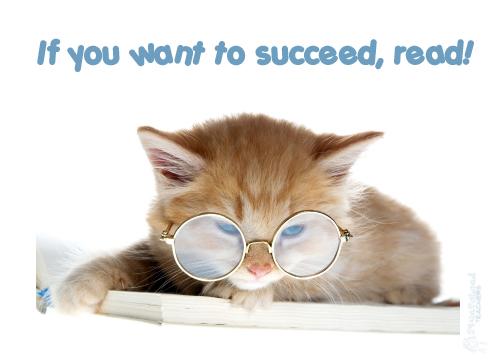 reading kitten poster