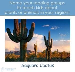 cactus reading groups sticker