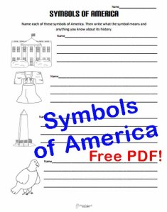 Symbols of America STICKER
